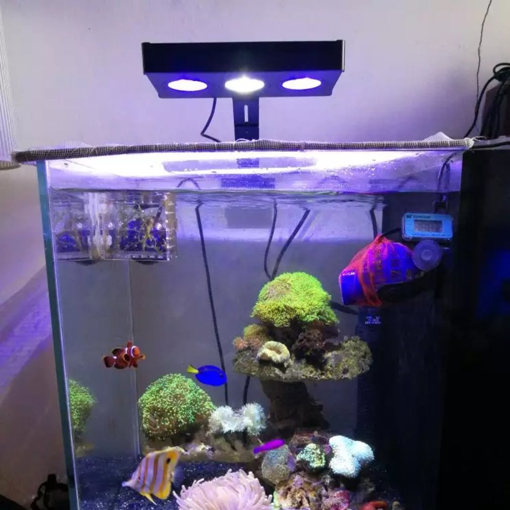 Led Licht Für Nano Aquarium Details About Led Aquarium Light Fish Tank Lighting With Touch Control For Coral Reef R6