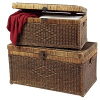 Ibolili Rattan Chest & Reviews | Wayfair