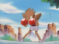Anthony 's Hitmonchan in the anime