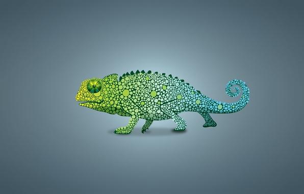 3d Wallpaper Amazon Fire Phone Wallpaper Green Chameleon Lizard Light Background