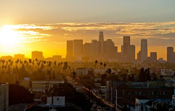 California Wallpaper Iphone 7 Обои Солнце Небо Облака Пальмы Калифорния Небоскребы