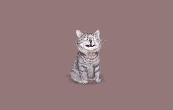 Pusheen Iphone Wallpaper Cute Обои кошка кот минимализм сидит смешная морда картинки
