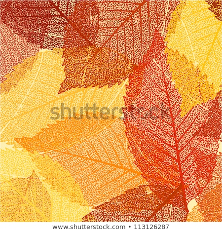 Falling Leaves Wallpaper Free Download Background Of Autumn Leaves Eps 8 Vector Illustration
