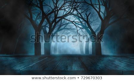 spooky background design stock photo © Alexander Skrabl (oconner