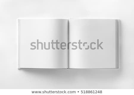 Open book with white blank pages vector illustration © ALEXEY
