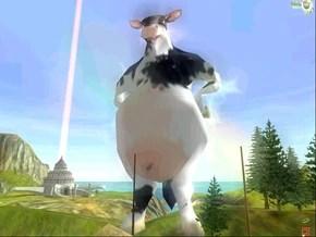290px-Cow.jpg?resize=290%2C218