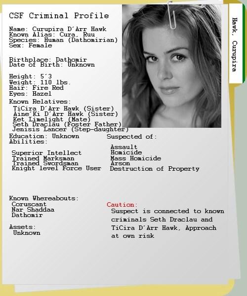 Criminal Profile Template - Erieairfair