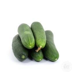 Small Crop Of How To Store Cucumbers