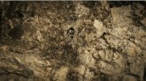 11张人脸从空中看山,有一张人脸 找人脸测智商的图片