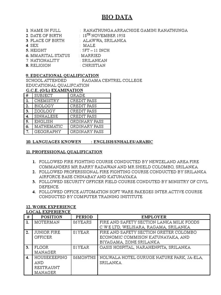 application cv original