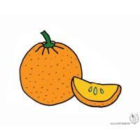 Disegno Arancia