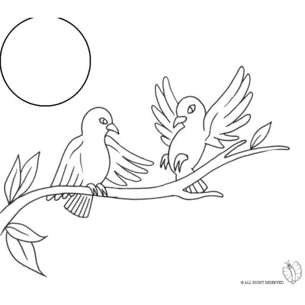 Disegno Di Uccelli Sull Albero Da Colorare Per Bambini