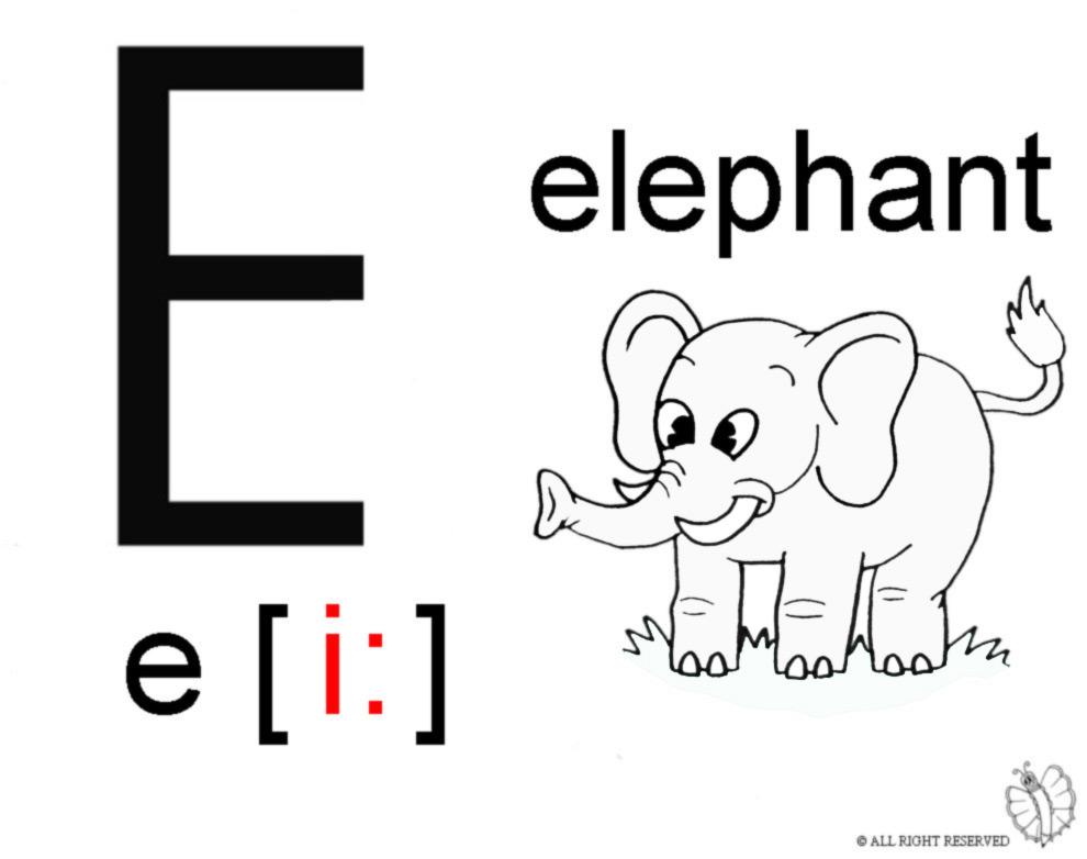 Stampa Disegno Di Lettera E Alfabeto Inglese Da Colorare