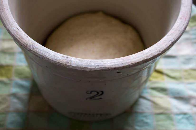 Rising dough for sourdough focaccia