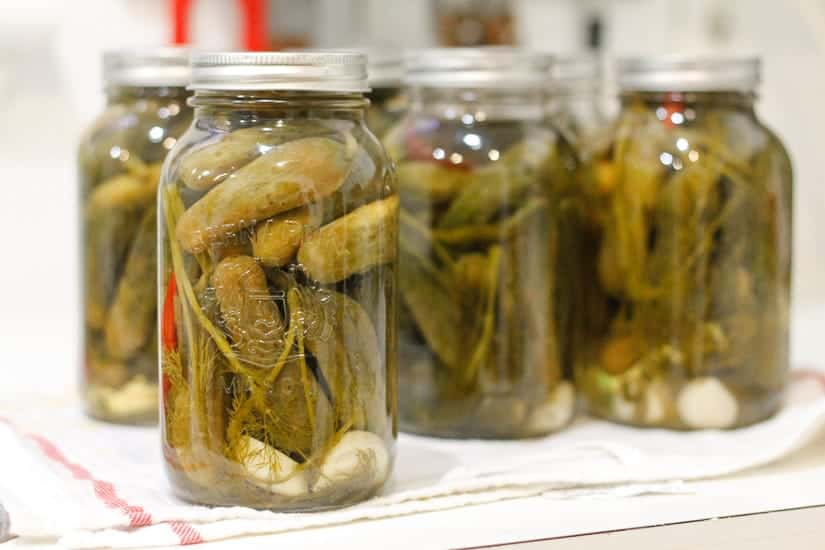 Spicy garlic dill pickles 13
