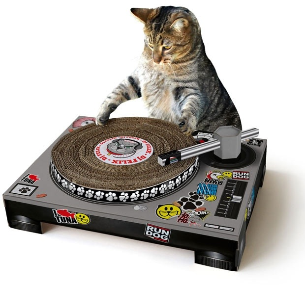Cat Scratching Post DJ Turn Tables Cat DJ