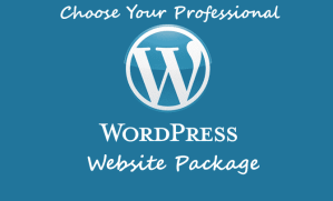 Wordpress Website Package
