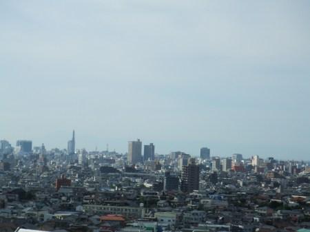 From Nagoya To Mt Fuji