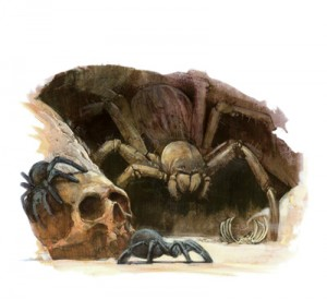 Warhammer Quest Travelling Hazard - Giant Spider