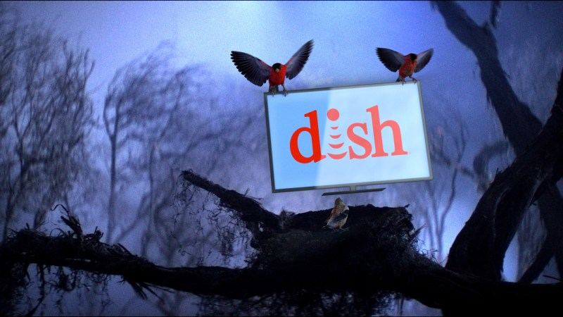 DISH Happy Forest 03