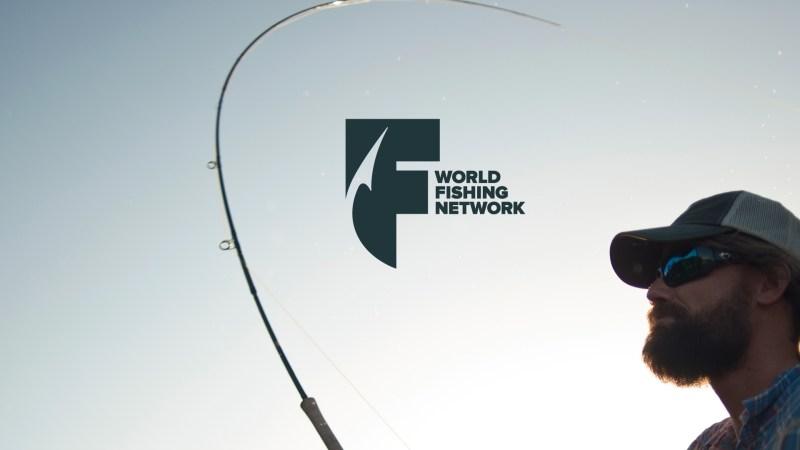 WFN_logo04