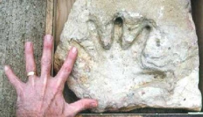 Fossilized Hand Print