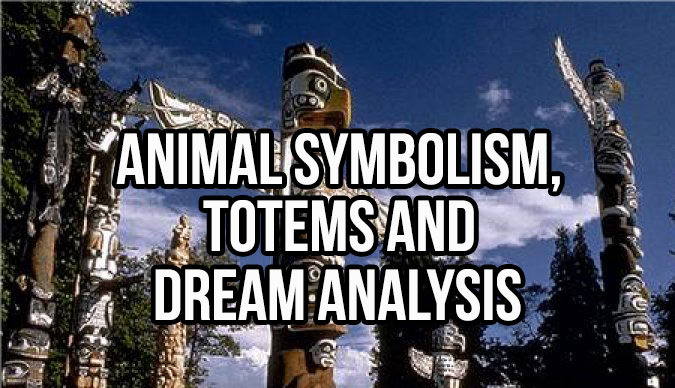 Animal Symbolism, Totems And Dream Analysis From A To Z - In5D
