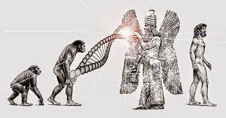 "A Look Into The Origins Of Mankind: Does This Explain Evolution's ""Missing Link?""  in5d in 5d in5d.com www.in5d.com http://in5d.com/ body mind soul spirit BodyMindSoulSpirit.com http://bodymindsoulspirit.com/"