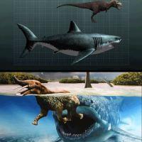 Megalodon ısırdığında 10.8 ile 18.2 tonluk bir basınç uygulardı. Bu basınç tarihöncesi bir balinanın kafasını üzüm tanesi gibi ezmeye yeterdi.