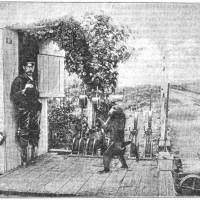 1800'lü yıllarda, Güney Afrika Cumhuriyeti'nde Jack adında bir Babun (maymun) demiryollarında sinyalcı olarak çalışıyordu. Ölene kadar görevinde hiç hata yapmadı ve hatta yerleri silmeyi, çöpü atmayı ve istasyonu korumayı yaptı.