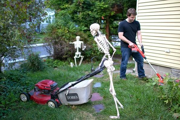 Caption This Skeleton Yard Work Closed Incredible Things