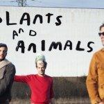 plants-and-animals-concours-concert-Paris