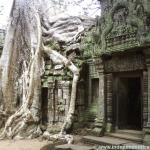 Angkor Wat, Asia, Cambodia, building