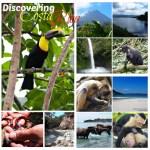 Discovering Costa Rica