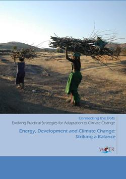 Energy, development and climate change: Striking a balance