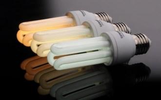 Andhra Pradesh takes lead in energy efficiency