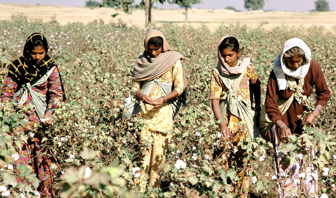While the National Action Plan on Climate Change identifies poor women as the worst affected group, it fails to address the gender dimensions in its eight missions, four of which relate to agriculture-related adaptation. (Image by Ray Witlin/ World Bank)