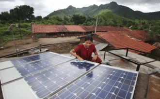 Let them eat solar panels
