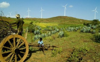 Renewable industry welcomes India budget, other greens lukewarm