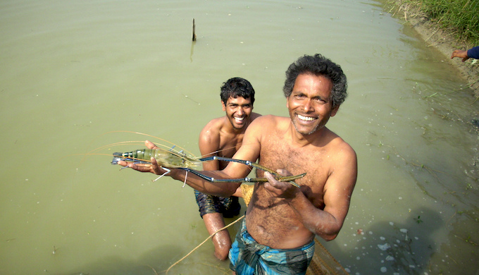 Fishermen of the Ganga delta are badly affected by climate change and are seeking adoptive technologies. (Photo by WorldFish)