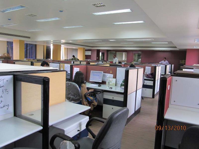 IT & Software Professionals
