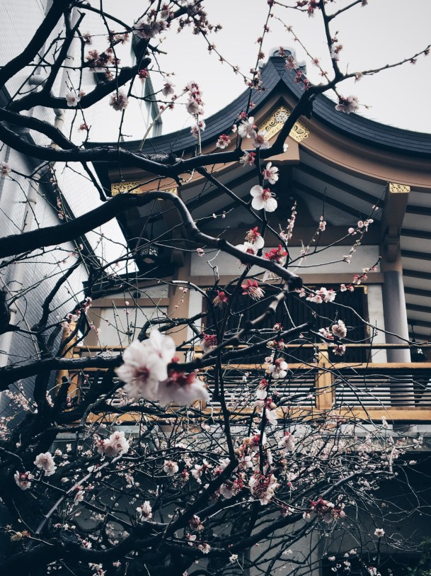 Temple fleuri