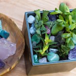 DIY Trendy Gem and Succulent Garden