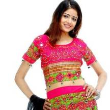 Choli - die traditionelle Bluse