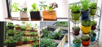 gardening landscaping apartment vegetable gardening ...