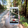 Mobile phone with Pokemon Go screen up against wooded background