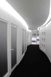 Black Carpet And White Walls - Carpet Vidalondon