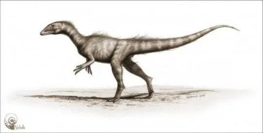 探索發現:在威爾士發現了200年前的侏羅紀恐龍