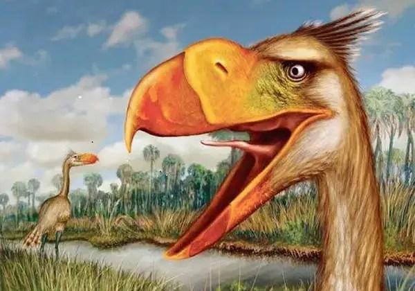 6千萬年前美洲大陸非常可怕的肉食性鳥類:駭鳥