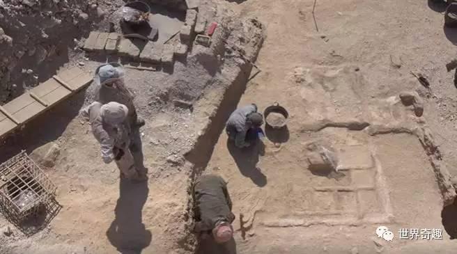 埃及考古新發現!4000年前花園竟是用來陪葬